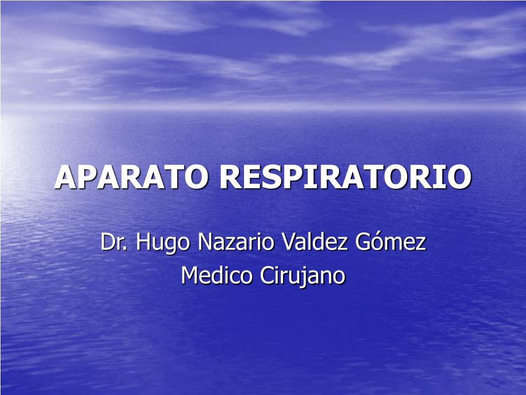 aparato respiratorio l.