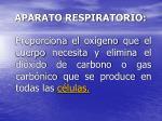 aparato respiratorio11