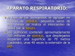 aparato respiratorio8