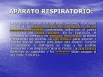 aparato respiratorio9