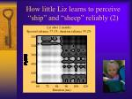 how little liz learns to perceive ship and sheep reliably 2