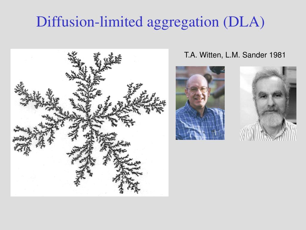Diffusion-limited aggregation (DLA)