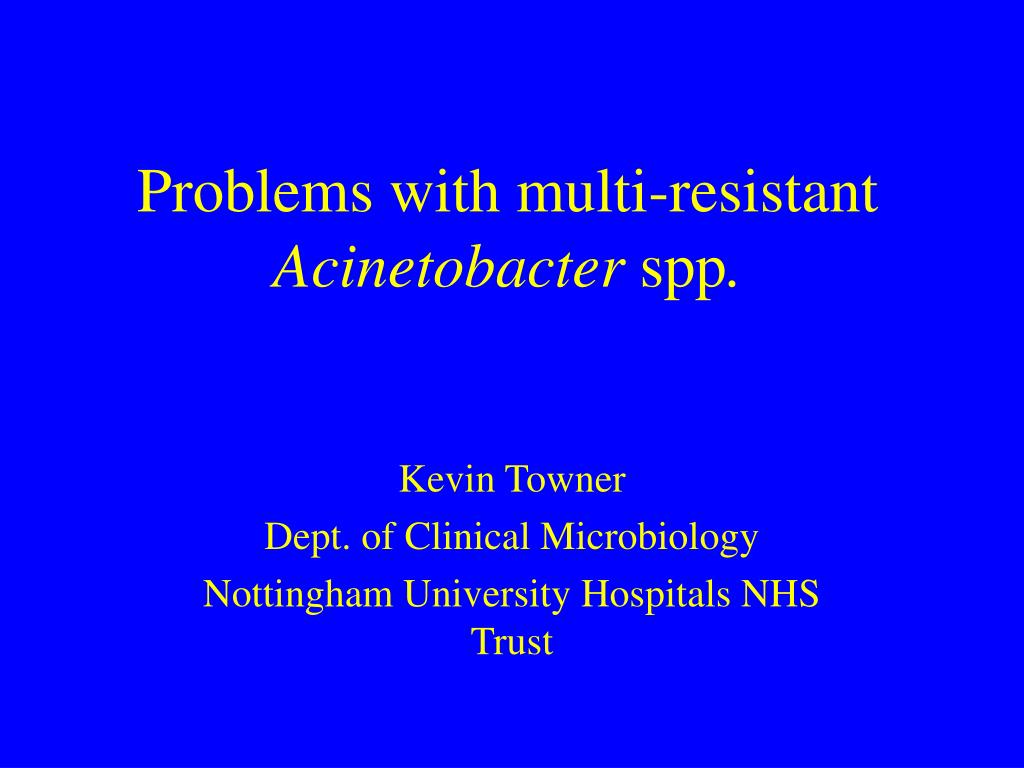 problems with multi resistant acinetobacter spp l.