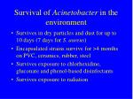 survival of acinetobacter in the environment