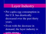 layer industry