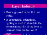layer industry35