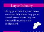 layer industry37