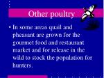 other poultry46