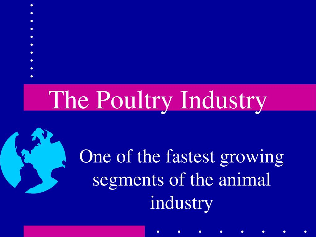 the poultry industry l.