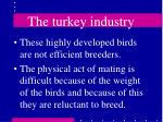 the turkey industry42