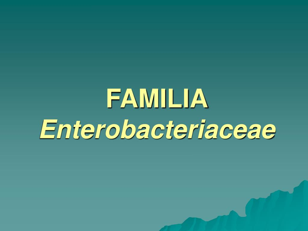 familia enterobacteriaceae l.