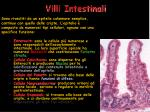 villi intestinali34