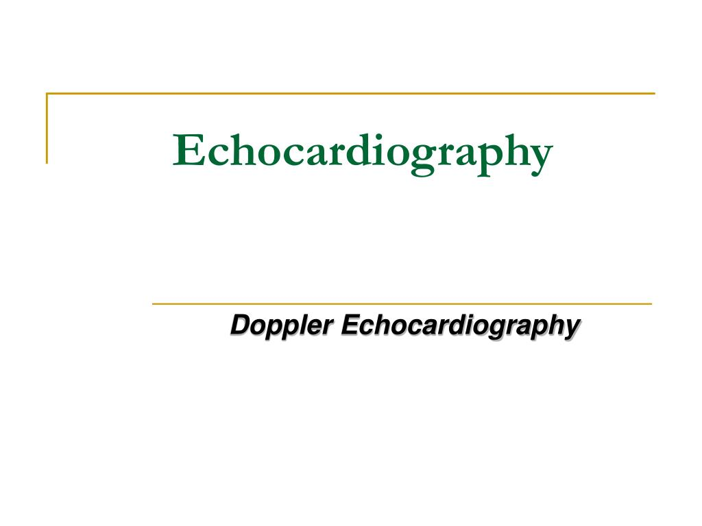 echocardiography l.