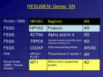 resumen genes sn