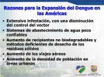 razones para la expansi n del dengue en las am ricas