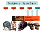 evolution of life on earth12