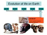 evolution of life on earth15