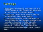pathologie9