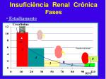 insufici ncia renal cr nica fases