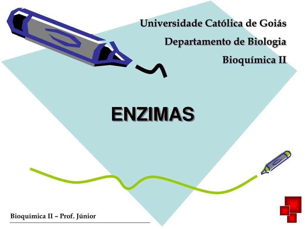 enzimas l.
