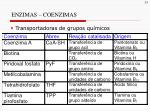 enzimas coenzimas1