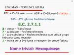 enzimas nomenclatura2