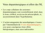 voies dopaminergiques et effets des nl