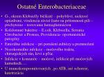ostatn enterobacteriaceae