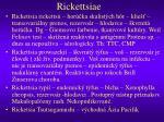 rickettsiae23