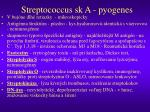 streptococcus sk a pyogenes