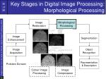 key stages in digital image processing morphological processing