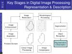 key stages in digital image processing representation description