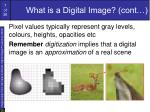 what is a digital image cont