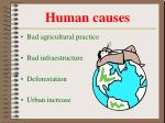 human causes