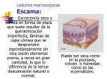 lesiones macrosc picas escama