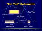 eel tail schematic