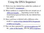 using the dna sequence8