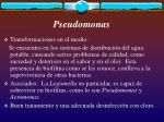 pseudomonas9