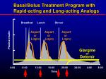 basal bolus treatment program with rapid acting and long acting analogs