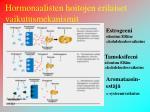 hormonaalisten hoitojen erilaiset vaikutusmekanismit