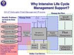 why intensive life cycle management support