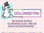g l msey n