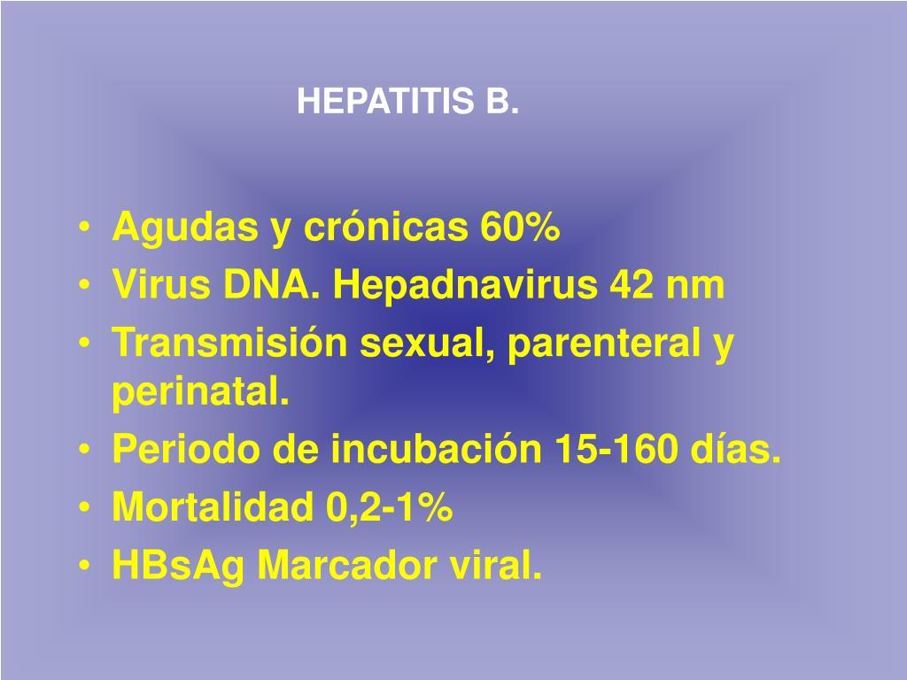 HEPATITIS B.