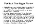 meridian the bigger picture