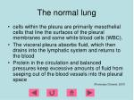 the normal lung18