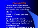 evaluaci n55