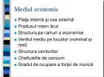 mediul economic