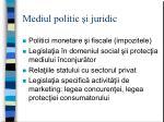 mediul politic i juridic