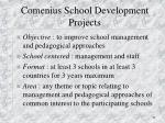 comenius school development projects