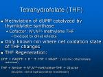 tetrahydrofolate thf